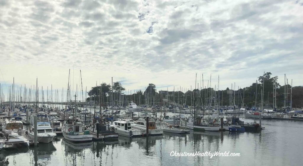Johnnie's Harborside Harbor View Santa Cruz